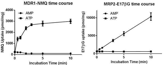 図4.トランスポーター発現ベシクルによる基質取り込みの時間依存性